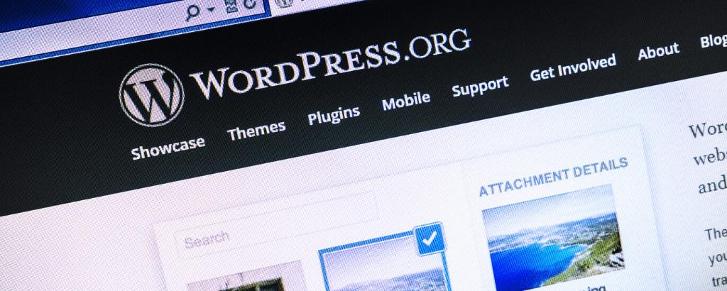 Welk WordPress thema gebruik jij?